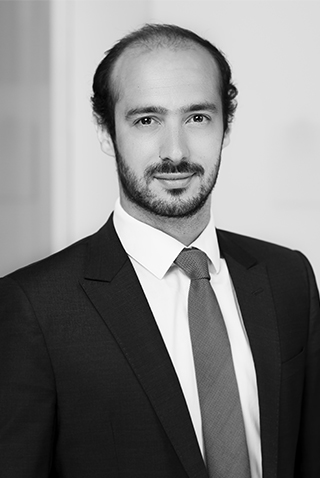 PAUL CAYLA - Consultant